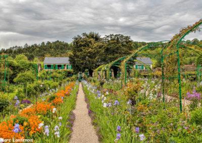 Jardin Claude Monet (27)