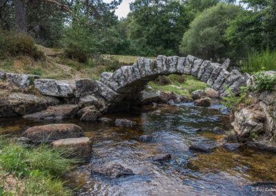 Pont de Senoueix (23)